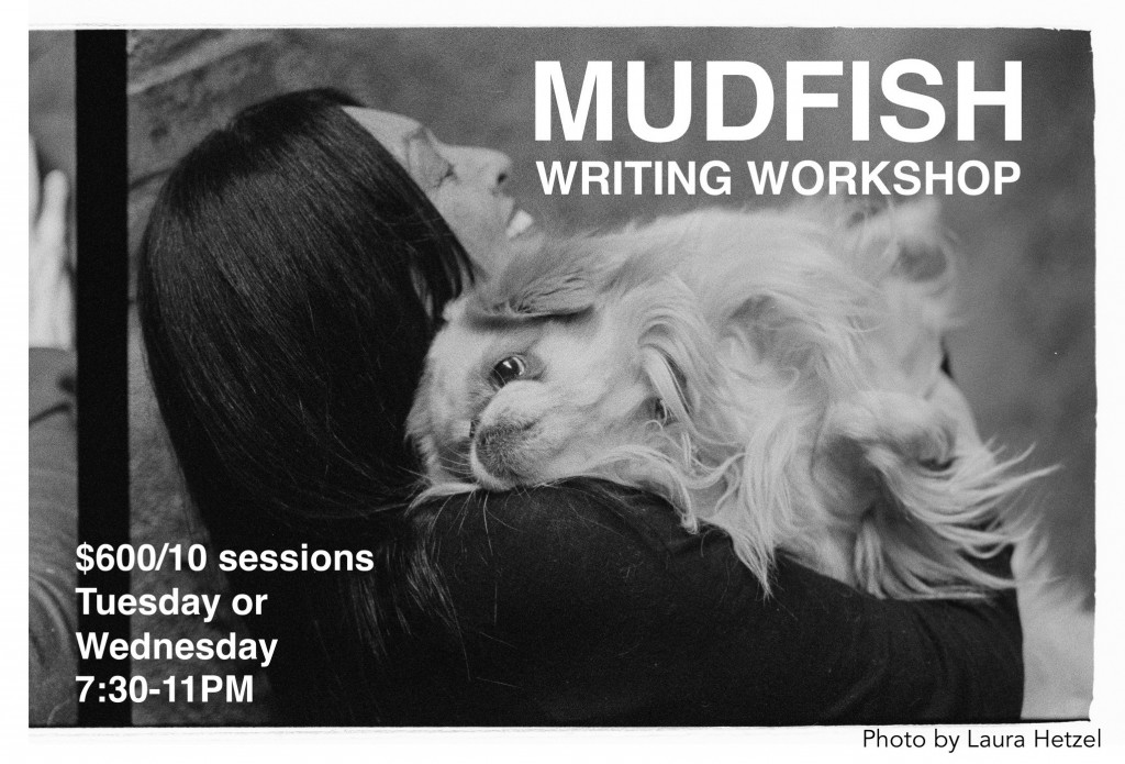 Mudfish Workshop